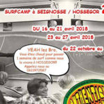 surf lessons seignosse