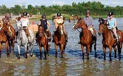 manege couvert pour chevaux 06