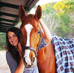 pensions pour cheval cannes