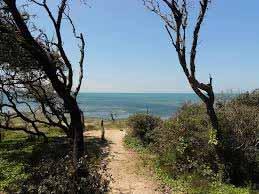 camping pieds dans l eau saint pierre d oleron. camping bord de mer