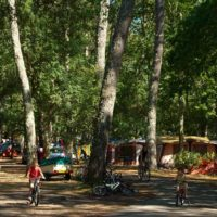 liste des campings dax.