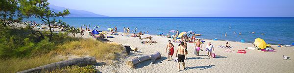 in camper corsica